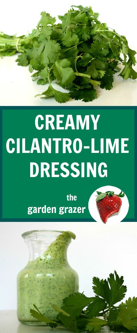 I could eat this with a spoon! Reader-favorite creamy cilantro-lime dressing…