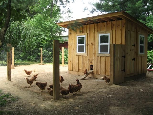 421 best chicken coops images on pinterest for Cool chicken coop plans