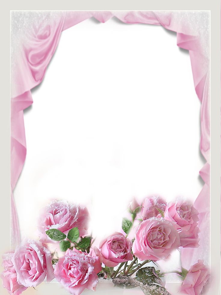 Photo Frame Png Photo Frame With Flowers Roses