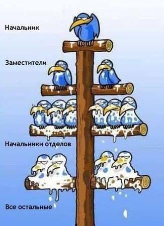 #юмор #приколы