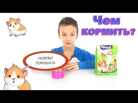 ЗВЕРЮШКИ - YouTube