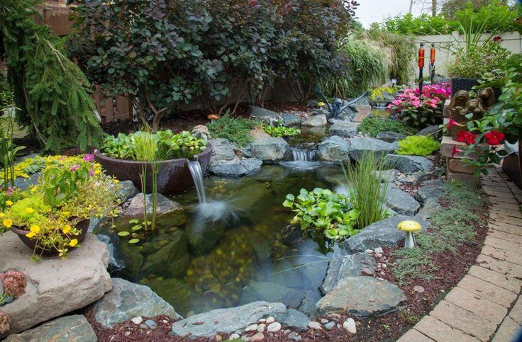 113 best images about japanese koi ponds on pinterest for Koi pond maintenance
