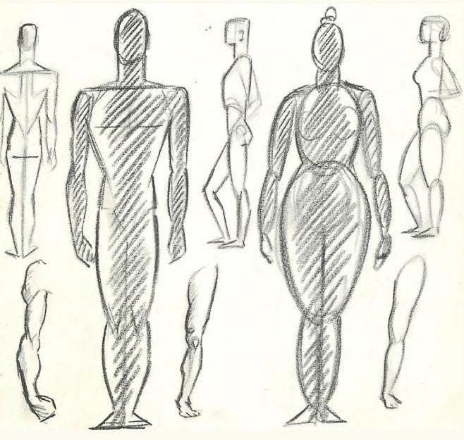 12 Best Figure Drawing Help Images On Pinterest Human Figure