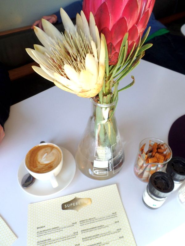 Coffee and proteas at Superette