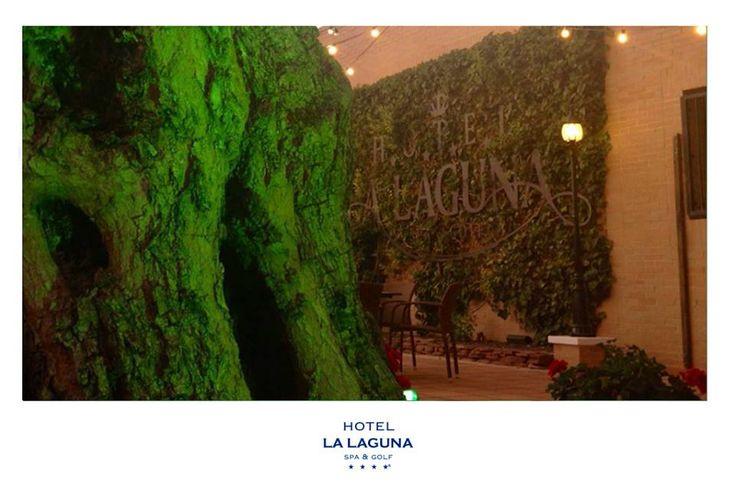 Reserva tu mesa en las cenas con música en vivo del Hotel La Laguna Spa & Golf. El Patio de los Geranios se engalana para recibirte en un entorno único, los viernes ofrecemos un menú por 16 € (primer plato, segundo plato, postre y bebida) también podrá disfrutar de la carta del restaurante, la velada estará amenizada por la maravillosa voz de Coco Illan...