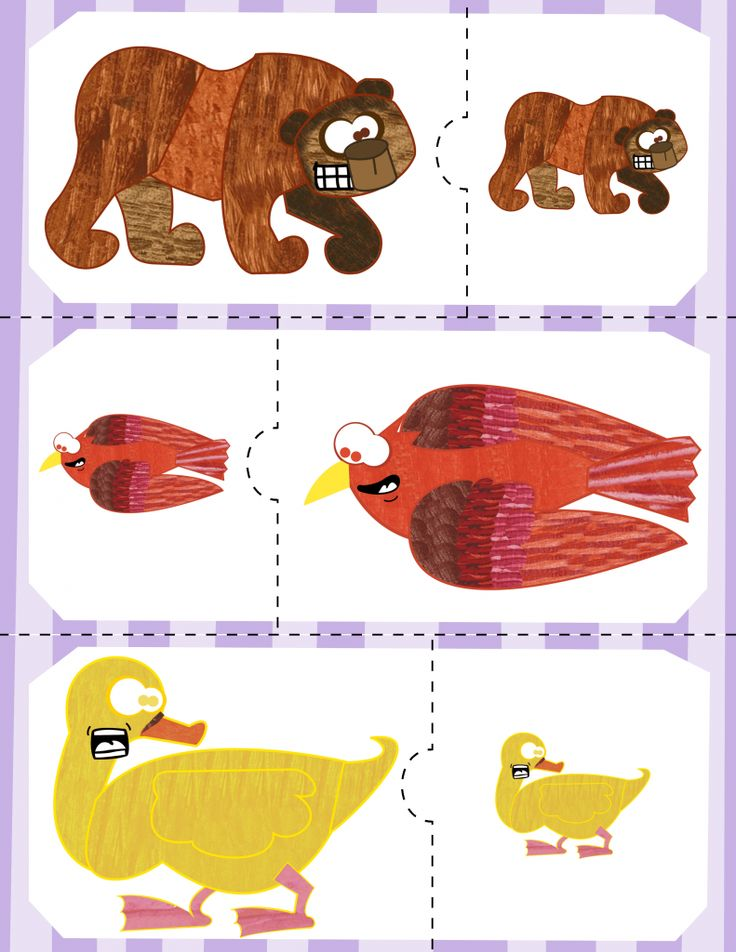 FREE! Brown Bear | Size Puzzles
