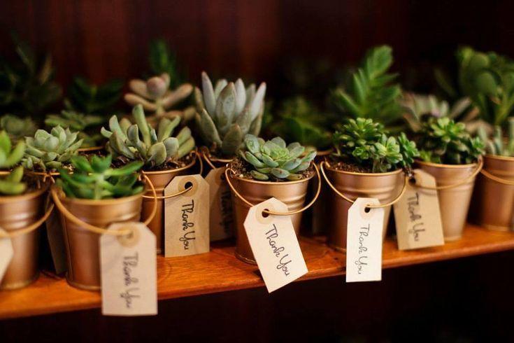 Cute succulent plants as favors.