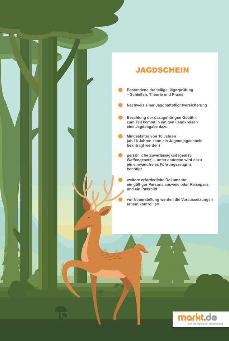 Jagdschein: Wie viel kostet ein Jagdschein? Und was ist für einen Jagdschein erforderlich?| Das erfährst Du im Ratgeber von markt.de.