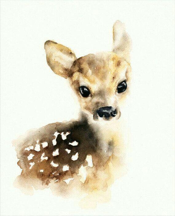 Little fawn x