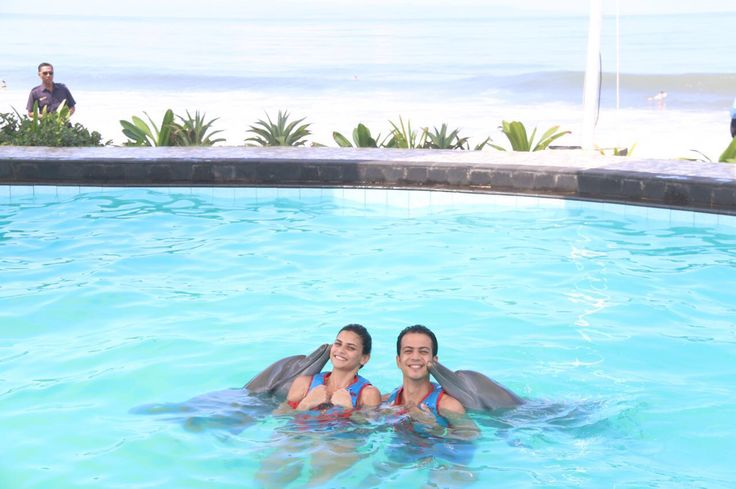 Guests from Egypt swimming with the dolphins! www.rudisbalitours.com