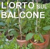 C'è crisi? E io mi faccio l'ORTO SUL BALCONE. Progetto di un orto per l'autunno-inverno : Progetti di piccoli orti