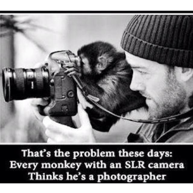 I am a monkey :-(