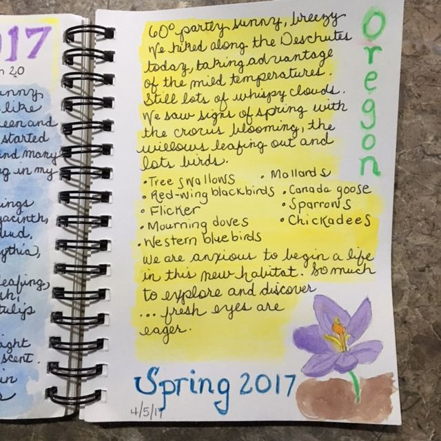 Once a Month Nature Journal Proejct - use color and watercolors. Spring in Oregon nature journal @handbookofnaturestudy