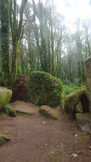 Portugal Wild Trail - take a walk on the wild side: Caminhada ao topo do Monge…