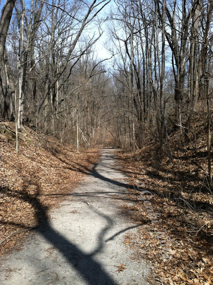 trails at potato creek state park indiana
