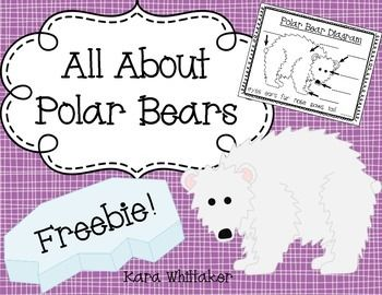 All About Polar Bears: I hope that you enjoy this fun polar bear freebie! Use these activities to supplement a non-fiction polar bear unit. This pack includes a 7-page All About Polar Bears book template, 2 polar bear graphic organizers (a KWL chart and a Can/Have/Are chart), and an invitation to a Polar Bear Party (invite parents, teachers, or other classes to hear your students read their polar bear books aloud!) If you enjoy these, you may also like Sequencing Picture Cards, Winter ...