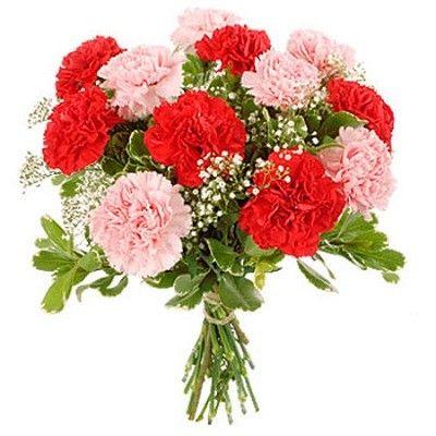 Букет состоит из 15 красно-розовых гвоздик, гипсофилы и папоротника  http://www.dostavka-tsvetov.com/shop/237/desc/zvezda