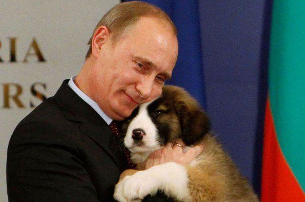 Владимир Путин (@putin_ww)   Твиттер