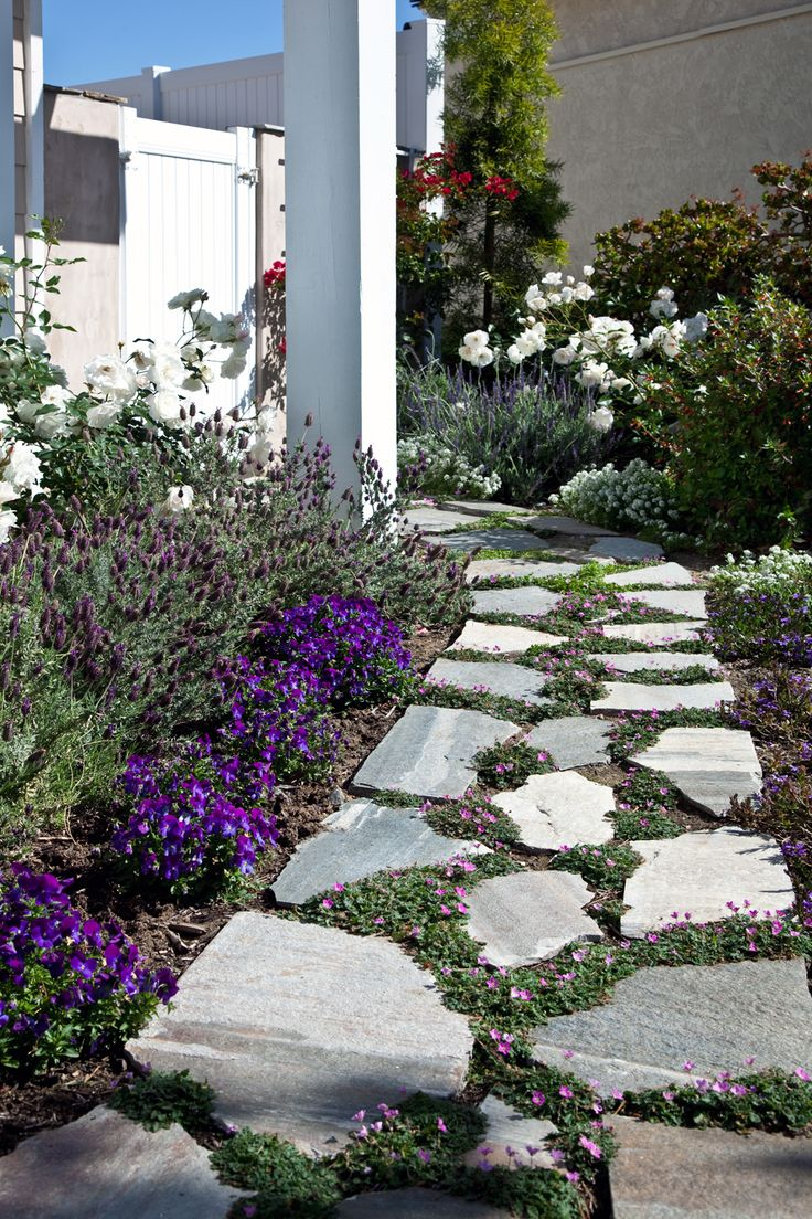 Best 25 california front yard landscaping ideas ideas for Low water front yard ideas