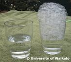STUDENT ACTIVITY: Investigating bubbles | In this activity, students learn about the surface tension of water by experimenting with bubbles.