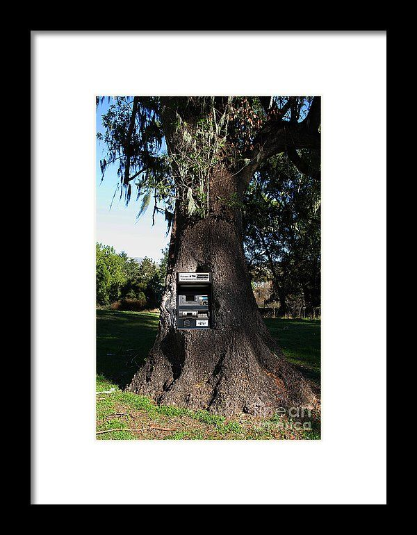 Money Tree . 7d9817 Framed Print by Wingsdomain Art and Photography  wingsdomain landscape tree trees backroad countryside country side atm machine atm machines atm automated teller machine automated teller machines money money tree cash money machine money machines bank machine bank machines bank