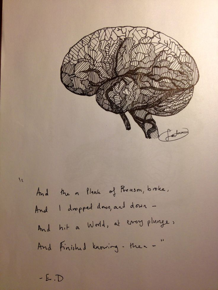 I'm studying neuroscience, it was only a matter of time before I drew a brain. And Emily Dickson excerpt to accompany it.