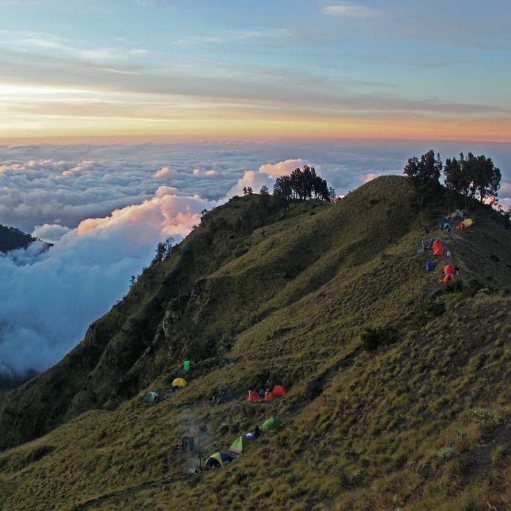 The basecamp on the ridge for the second night just before the final climb. Mount Rinjani Lombok Indonesia #sunset #outdoors #hiking #trekking #camping #rinjani #skyporn #gunung #gunungrinjani #pendaki #pendakiindonesia #mountains #volcano #nature #naturelovers #lombok #indonesia #wonderfulindonesia