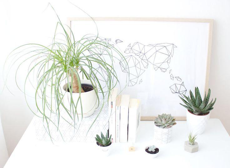 pflanzen und kunst es ist wieder zeit f r die urban jungle bloggers plants geometric earth. Black Bedroom Furniture Sets. Home Design Ideas