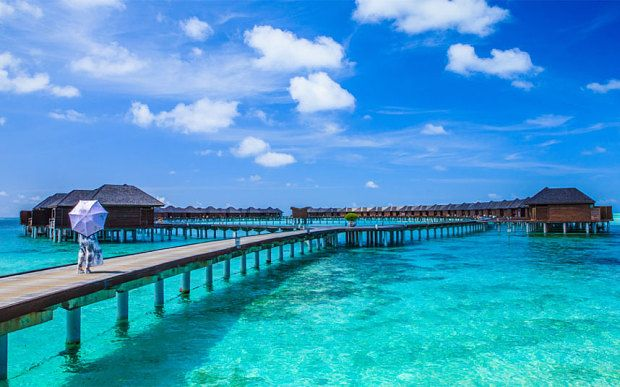 Maldives Holiday Tour Packages  Holiday tour agency is no1 travel agency which is providing the Holiday Tour Packages Maldives, Maldives Holiday Tour Packages, cheap Holiday Tour Packages Maldives, Best Holiday Tour Packages for Maldives, Maldives Holiday.