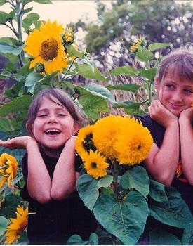 Children enjoying the sunflowers they planted in I Ka Pono Community Garden in Kamuela, Hawaii.