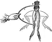 Galvanism - Wikipedia, the free encyclopedia