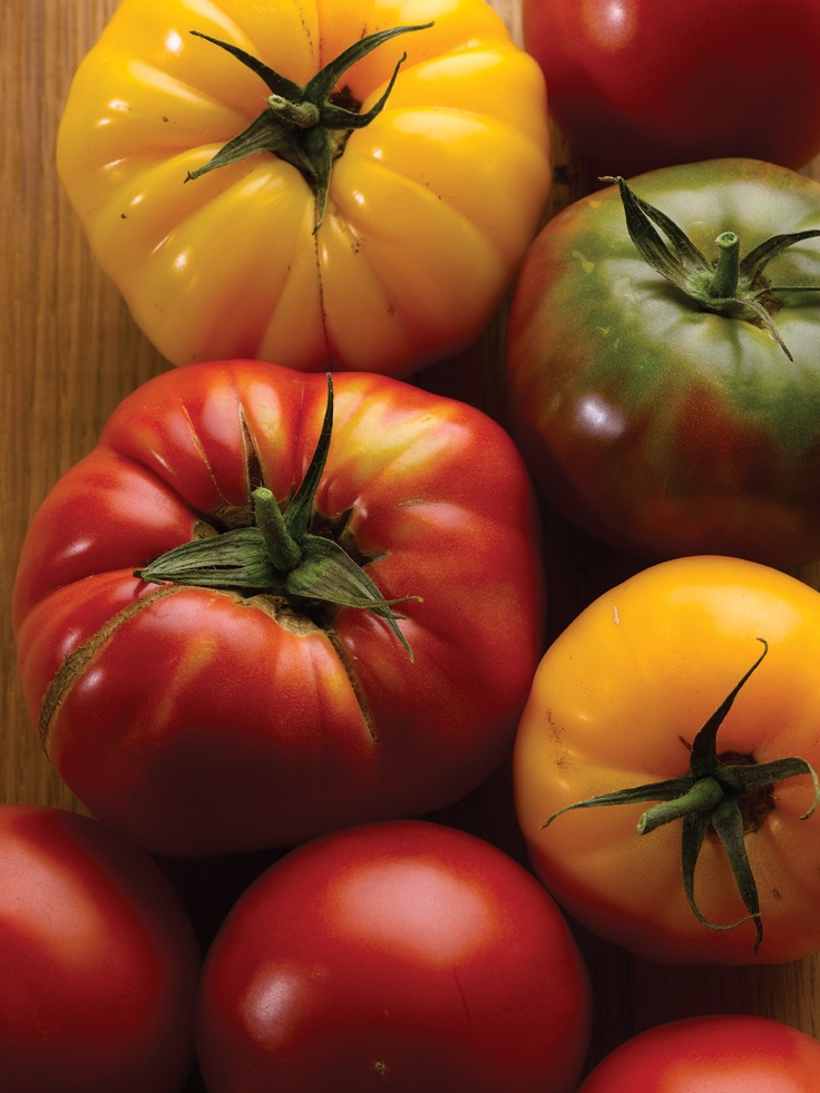 Garden-fresh tomatoes grown in Kentucky