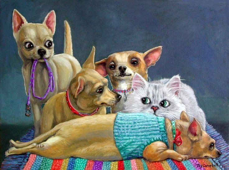 должны картинки чихуахуа кошки объектов продаже