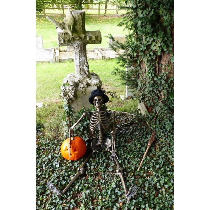Meet Mort Ality - the life size bronze retro anatomical skeleton. He's very excited about Halloween and is hoping to join you for the long awaited annual celebrations.