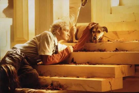 Layne Staley and Sunshine, his dog. Sunshine appeared on Alice in Chains' self titled album, also known as the Tripod album and the Three Legged Dog album.