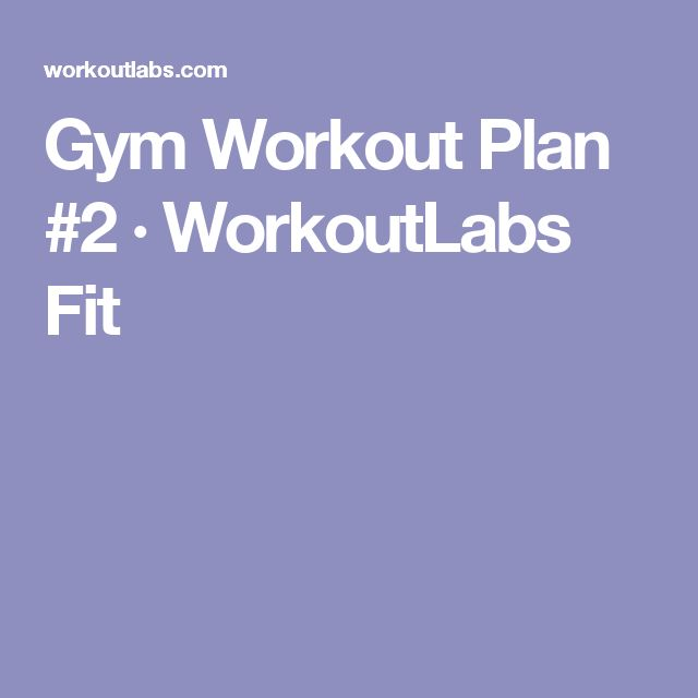 Gym Workout Plan #2 · WorkoutLabs Fit