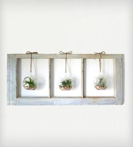 Window+Frame+Terrarium+-+3-Pane+by+Roots+in+Rust+on+Scoutmob+Shoppe