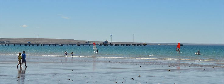 Verano en Puerto Madryn - Mucha playa y naturaleza para uan vacaciones con chicos de cara al mar. #Madryn #Argentina