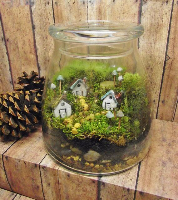 Prime Miniature real estate Terrarium. Darling little miniature garden!  Three enchanting clay houses sit on a large lot of lush moss, sourrounded by