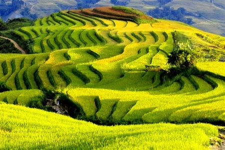 Wonderful and amazing places in a Vietnam tour package