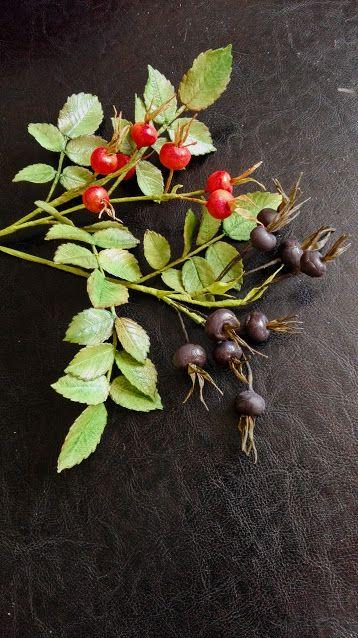 Rosa majalis - šípky- ako inak, cukrové
