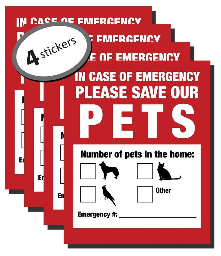 Pack of 4 Emergency Pet Finder Stickers Only $6.99!