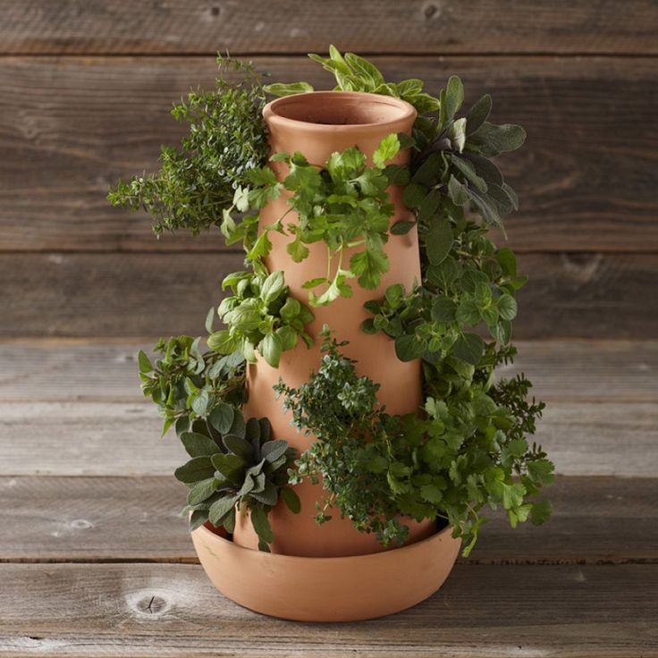 103 best Garden Love this Pot Polanter Container images on Pinterest