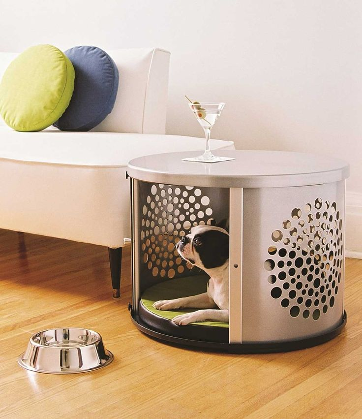 Simple-Dog-Furniture-Ideas ~ http://www.lookmyhomes.com/smart-in-choosing-dog-furniture/