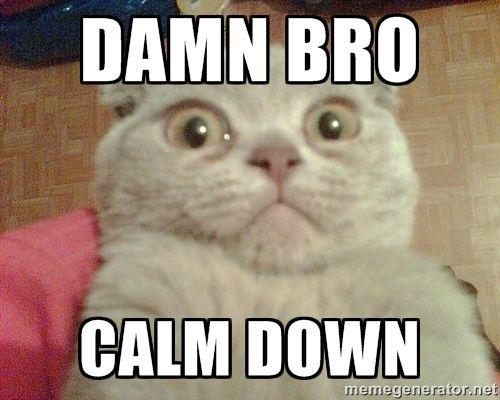d0116cbbb585679ff13b544fe7204082 espanto ui best 25 cat meme generator ideas on pinterest grumpy cat meme,Get Down Cat Meme