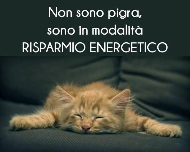 """""""Non sono pigra,  sono in modalità RISPARMIO ENERGETICO"""" #tesorinipelosi"""