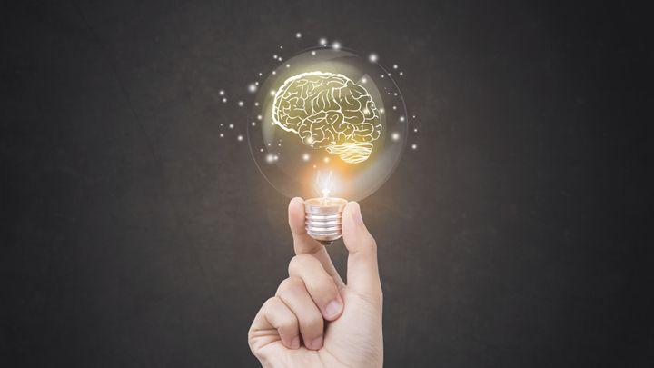"""여기저기서 """"창의성이 중요하다""""고들 한다. 부모치고 '우리 아이 창의력 키우기' 같은 문구에 한 번쯤 혹해보지 않은 적 없을 터. 하지만 구체적 방법론에 이르면 다들 고개를 갸웃거린다. '대체 무슨 수로 창의성을 계발할 수 있단 거지?' """"인공지능 세상, 암기는 시대착오적 학습법""""이라고? '이전의 인상이나 경험을 의식 속에 간직하거나 도로 생각해냄'. 기억(記憶)의 사전적 정의다. 그런데 만약 이 기억이 창의성과 밀접한 관계에 놓여있다면 어떨까? 뇌(腦)과학에서 기억은 '인지 능력의 본질적 구성 성분'으로 정의된다. 실제로 기억은 인간의 지각과 행동에 지속적으로 반영된다. 생각은 이렇게 기억된 것들이 반딧불이처럼 반짝이는 현상이다. 사람들의 일상은 대개 습관적·반복적 행동과 생활 용어로 구성된다. 매일 특별한 운동 능력을 발휘하거나 학술 용어로 소통하는 이는 많지 않다. 어려운 추상 명사나 자연과학 서적에나 등장할 법한 개념어를 몰라도 생활하는 데 별 어려움이 없는 건 그…"""