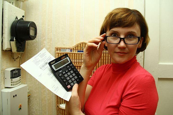 Коммунальщиков можно будет проверить онлайн.. Обсуждение на LiveInternet - Российский Сервис Онлайн-Дневников