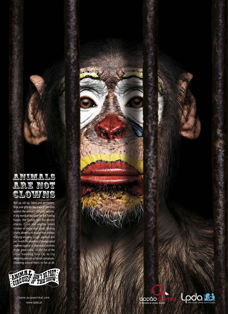 33 Powerful Animal Ad Campaigns That Tell The Uncomfortable Truth http://www.boredpanda.com/powerful-animal-ads/