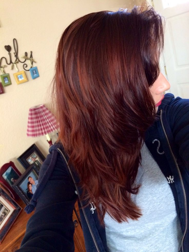 Best 25+ Dark red brown ideas on Pinterest | Dark red ...